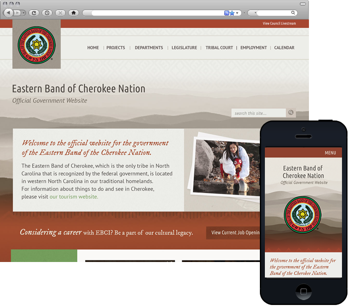 Government Website Design